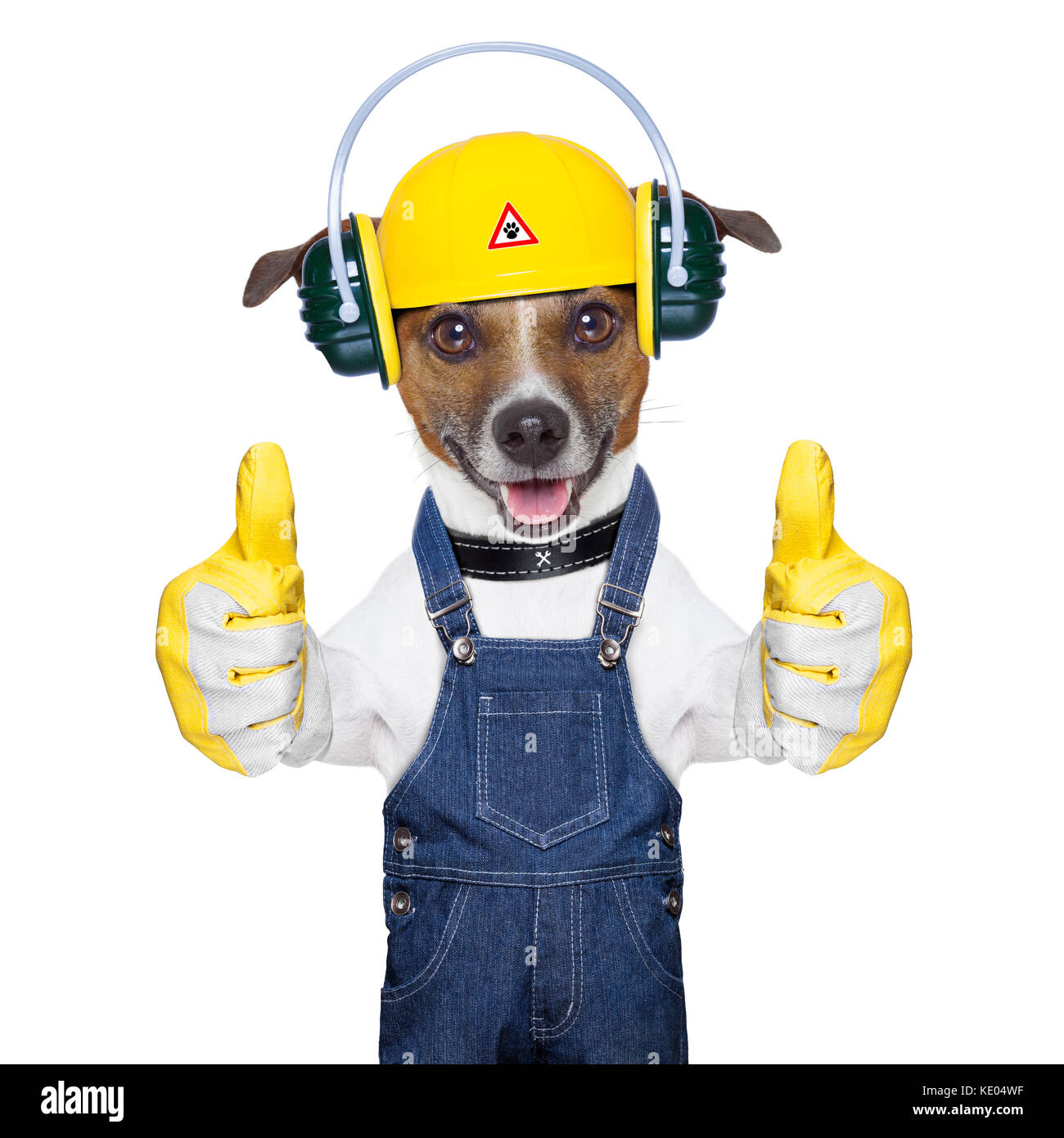 Funny Under Construction Dog With Two Thumbs Up Stock
