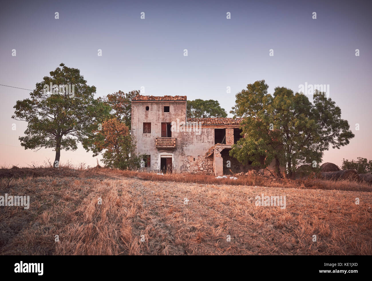 Rural landscape, old farmhouse with olive trees, Italy Stock Photo ...