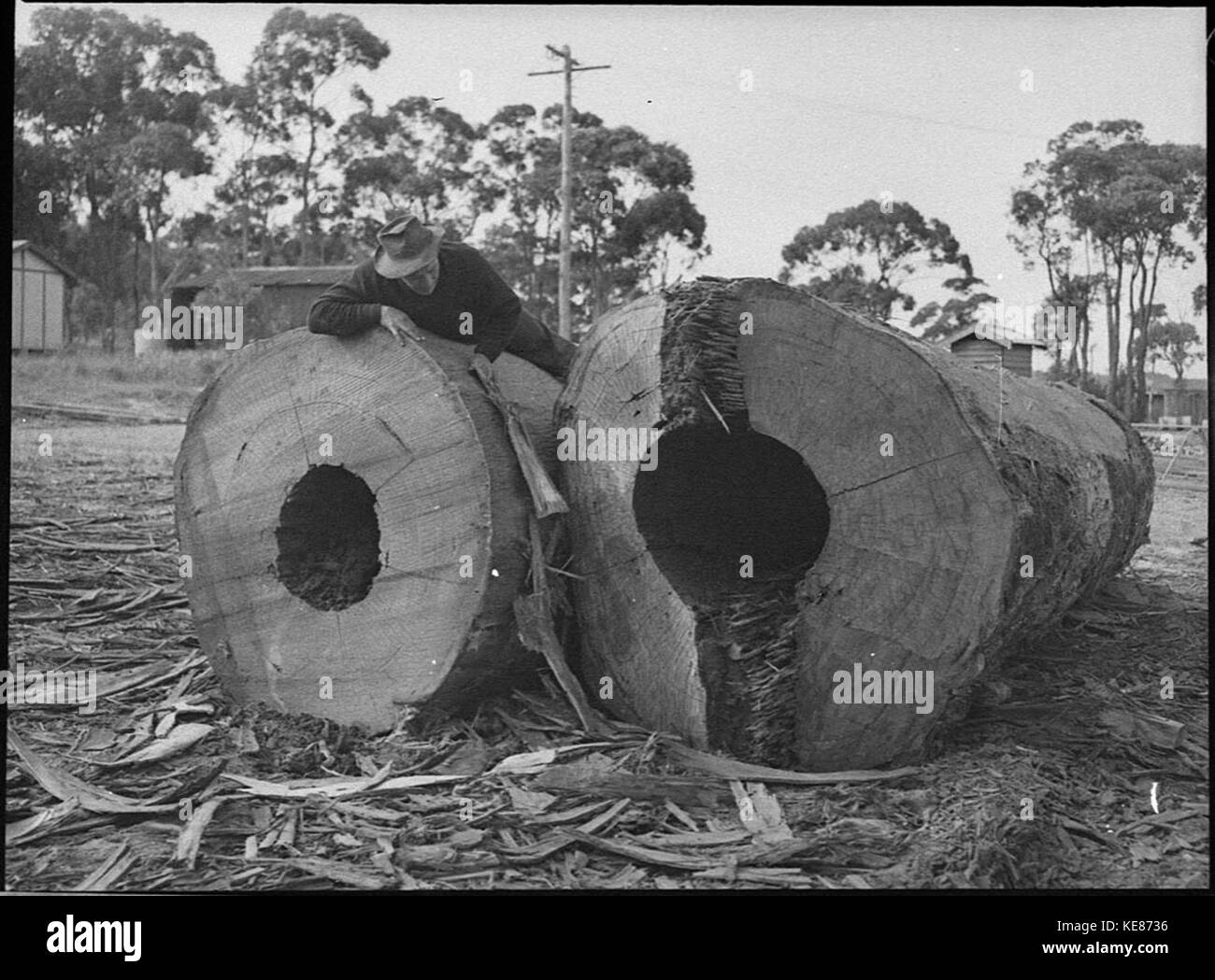 Old Sawmill Black And White Stock Photos Amp Images Alamy