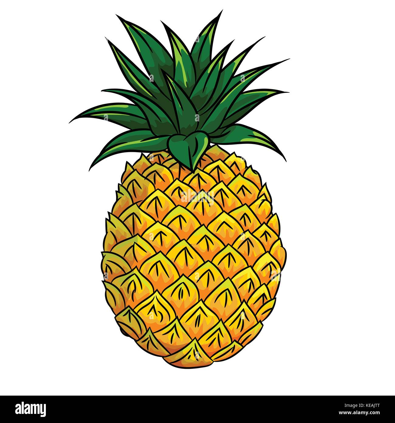 Coloring book kea - Hand Drawn Sketch Of Pineapple Isolated Black And White Cartoon Vector Illustration For Coloring Book