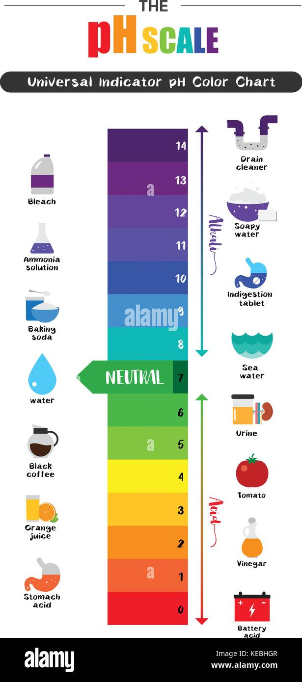 The pH scale Universal Indicator pH Color Chart diagram acidic ... for Ph Scale Universal Indicator  181pct