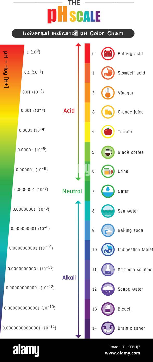 Ph Scale Stock Photos  for Ph Scale Universal Indicator  585eri