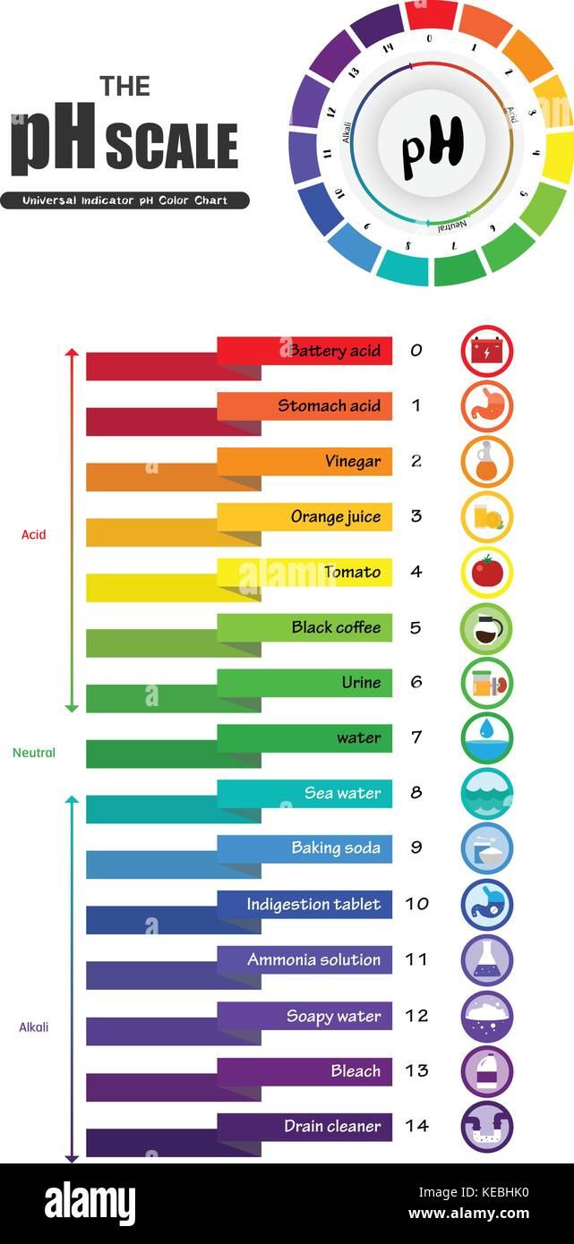 The pH scale Universal Indicator pH Color Chart diagram acidic ... for Ph Scale Universal Indicator  143gtk