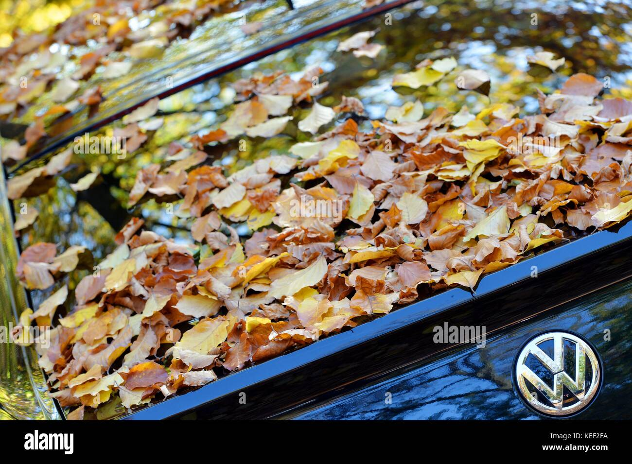 Appeal Social Stock Photos & Appeal Social Stock Images - Alamy