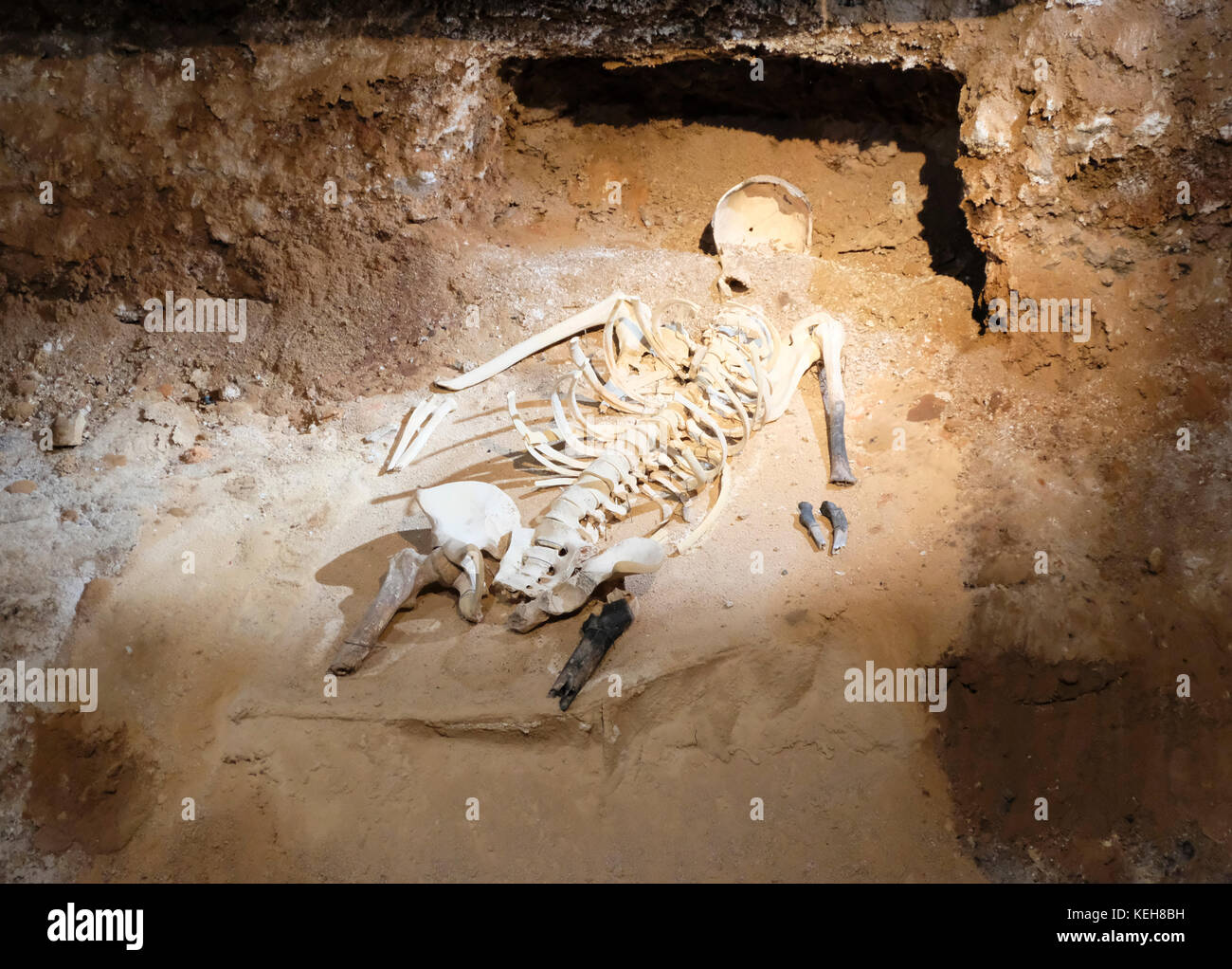 mammoth cave black women dating site Mammoth cave cabins hot tubs  bowls of and her eyes were cave black as her hand reached out, cal opened view document  'women for hire: .
