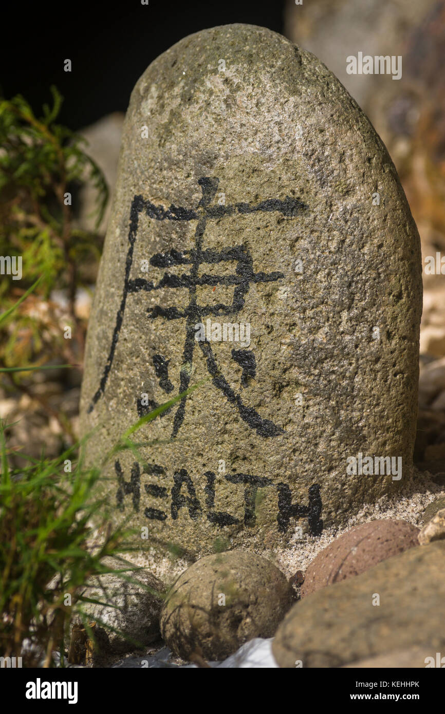 Chinese symbol of health on a stone stock photo 163885643 alamy chinese symbol of health on a stone biocorpaavc Gallery