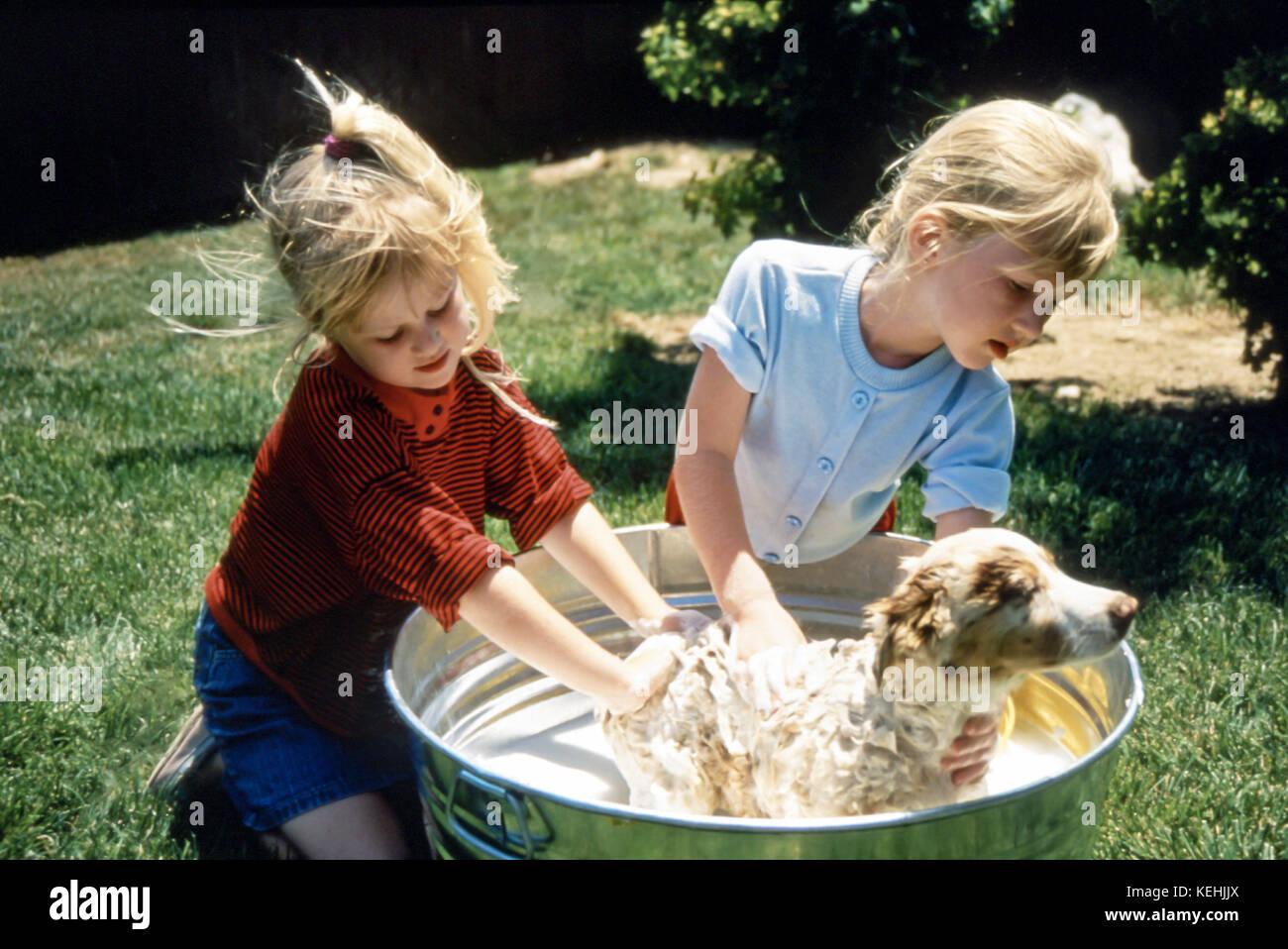 child dog bath stock photos u0026 child dog bath stock images alamy