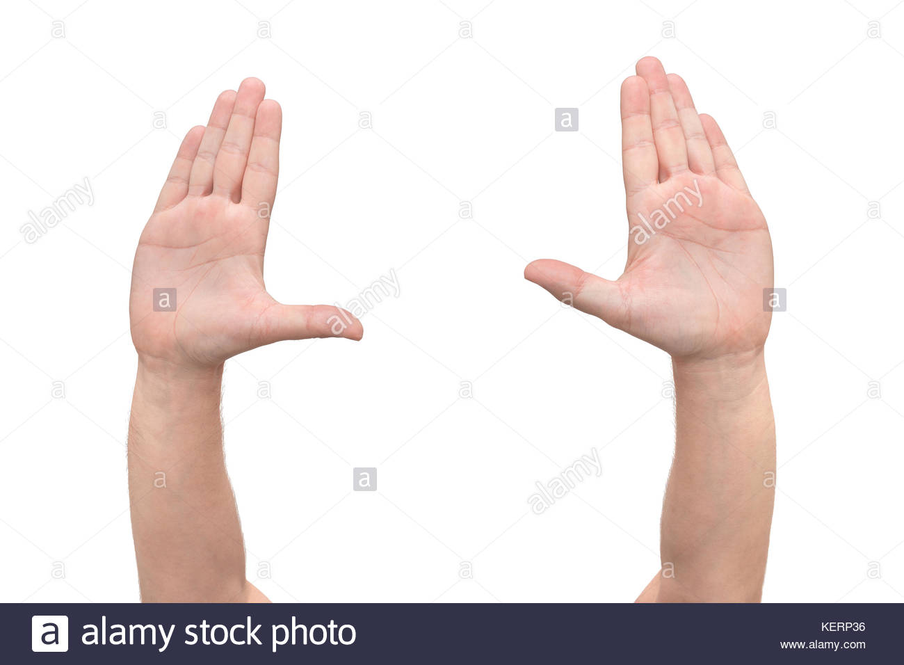 Two hands symbol that means stop on white background front view two hands symbol that means stop on white background front view buycottarizona Choice Image