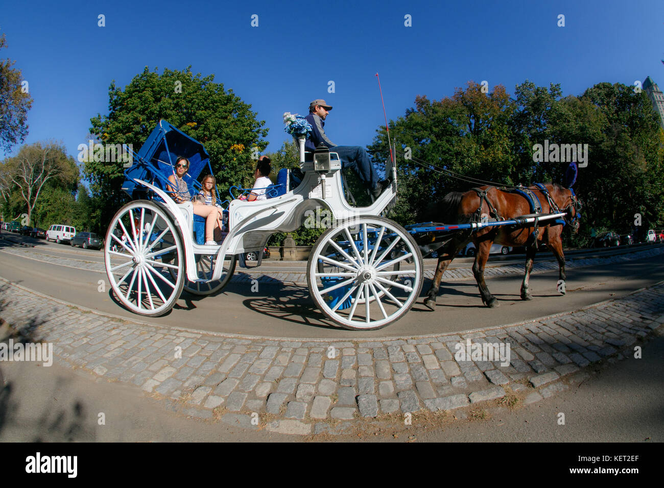 central park carriage rides ending a relationship
