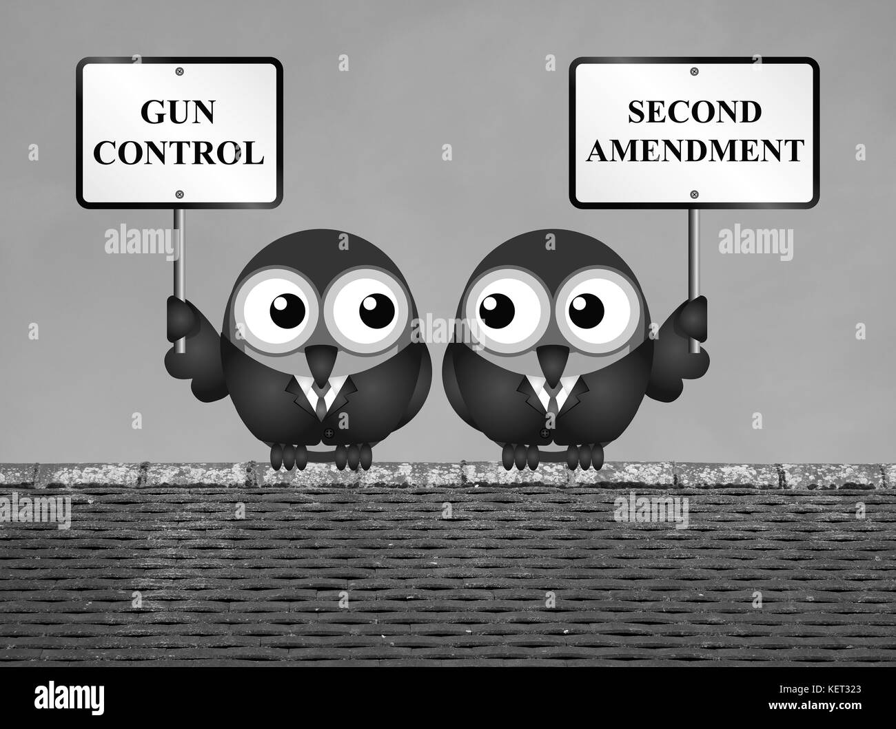 gun control right solution This cannot be said of all gun use the right to stricter gun control laws is hardly the total solution to gun why gun control, in.