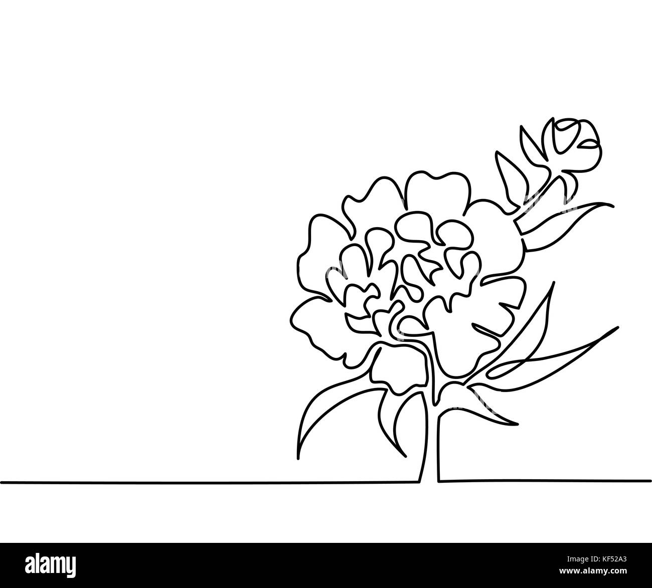 Beautiful Flower Line Drawing : White peony sketch stock photos