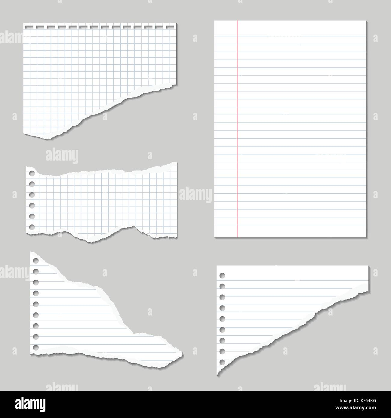 Set Of Vector Illustrations Of Torn Pages Of Notebook Paper Lined And  Squared With Shadows  Paper Lined