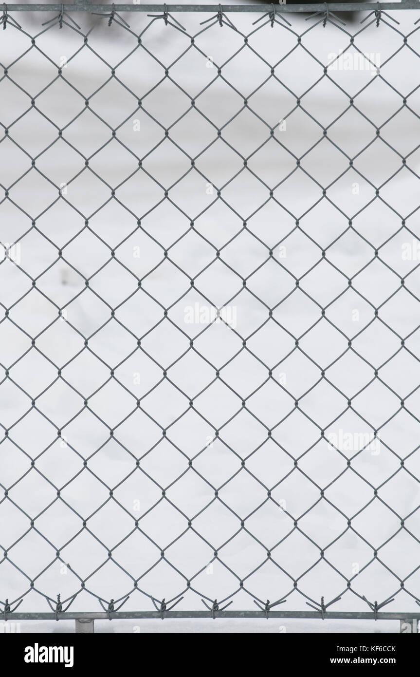 Famous Chicken Wire Fence Gate Gallery - Wiring Schematics and ...