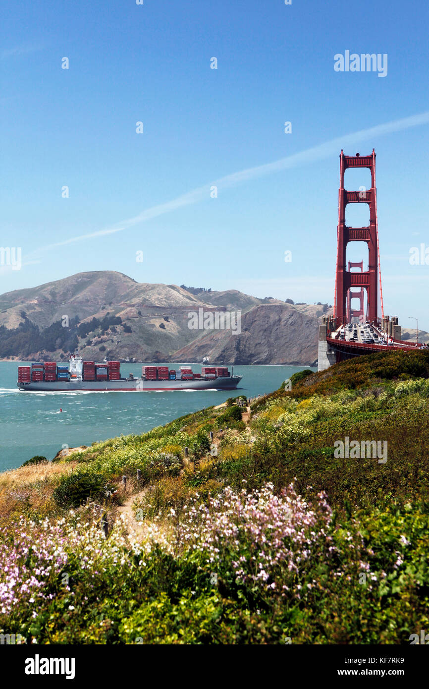 Forex cargo south san francisco
