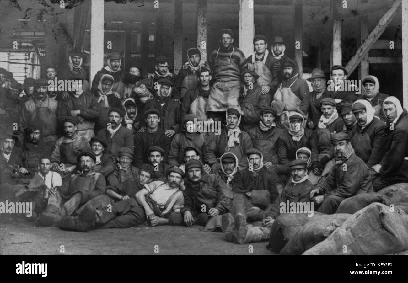 1 123397 Cold Storage Workers At The Redbank Meatworks, Ca. 1900