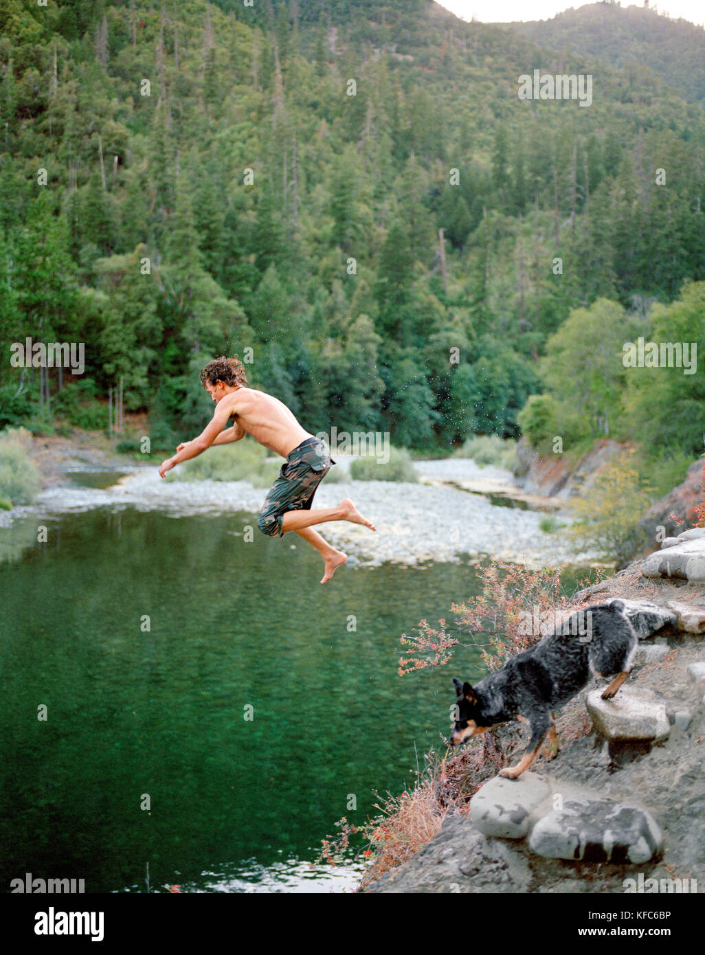 Usa California Young Man Jumping Into The Salmon River Forks Of