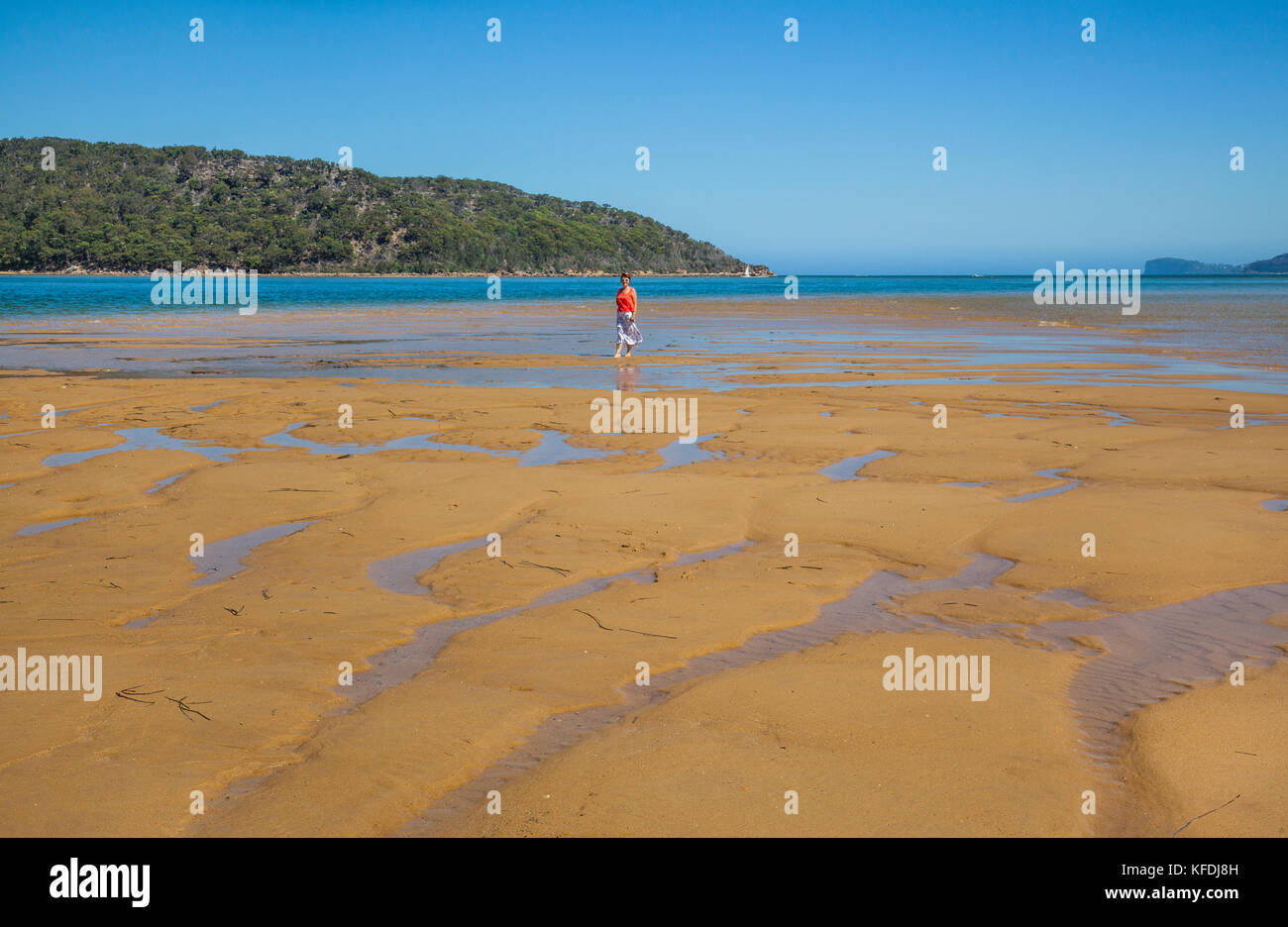 Australia New South Wales Central Coast Broken Bay Sandbar At Umina Beach At Low Tide Against The Backdrop Of The Bouddi Peninsula