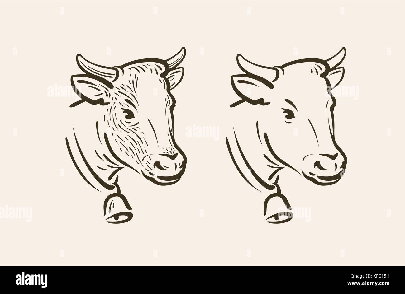 Portrait Of Cow With Bell Dairy Farm Animal Symbol Or Icon Sketch