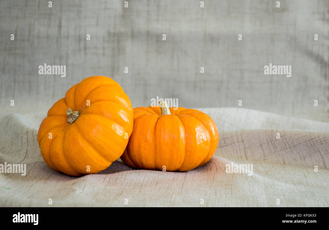 2 small pumpkins isolated on a tan cloth background stock photo