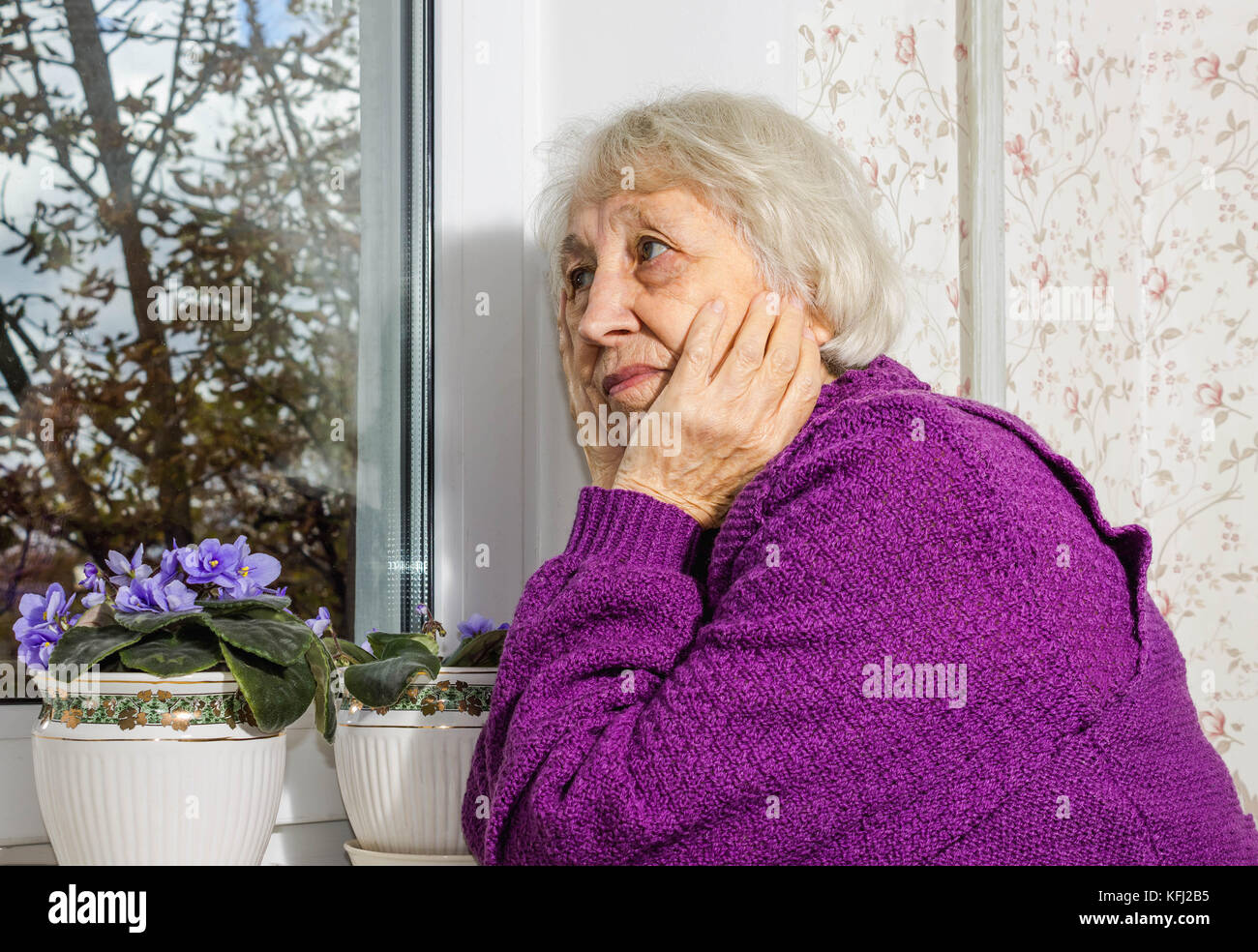 Old Lady White Hair Pensioner Stock Photos Amp Old Lady