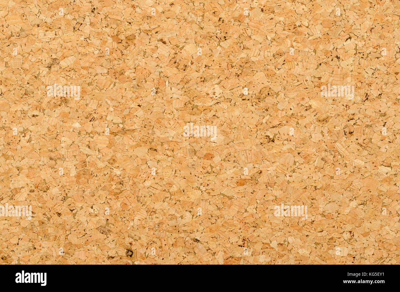 cork sheet surface with coarse texture comprised of rough grained cork oak quercus suber