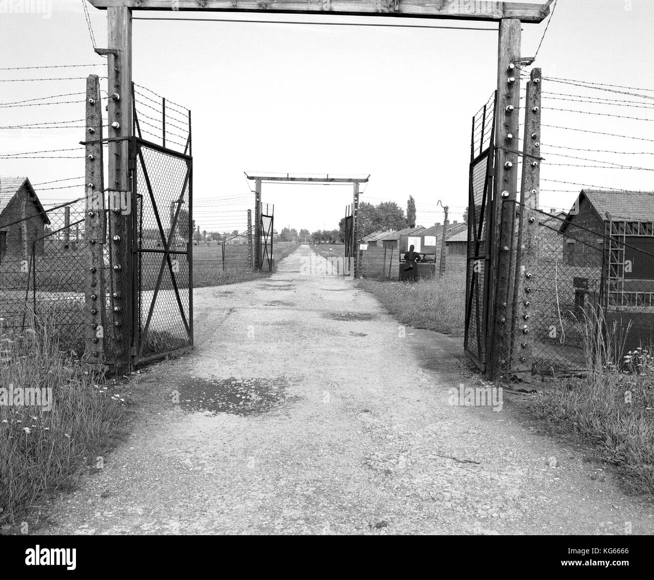 Where Was The Auschwitz Camp Located: Kapo Black And White Stock Photos & Images