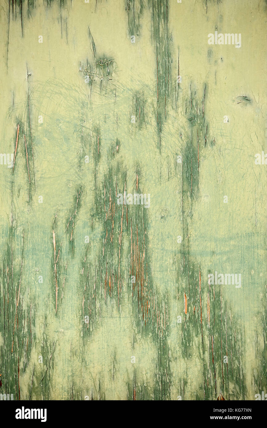 Texture of ancient wood with cracked paint of green color Stock ...