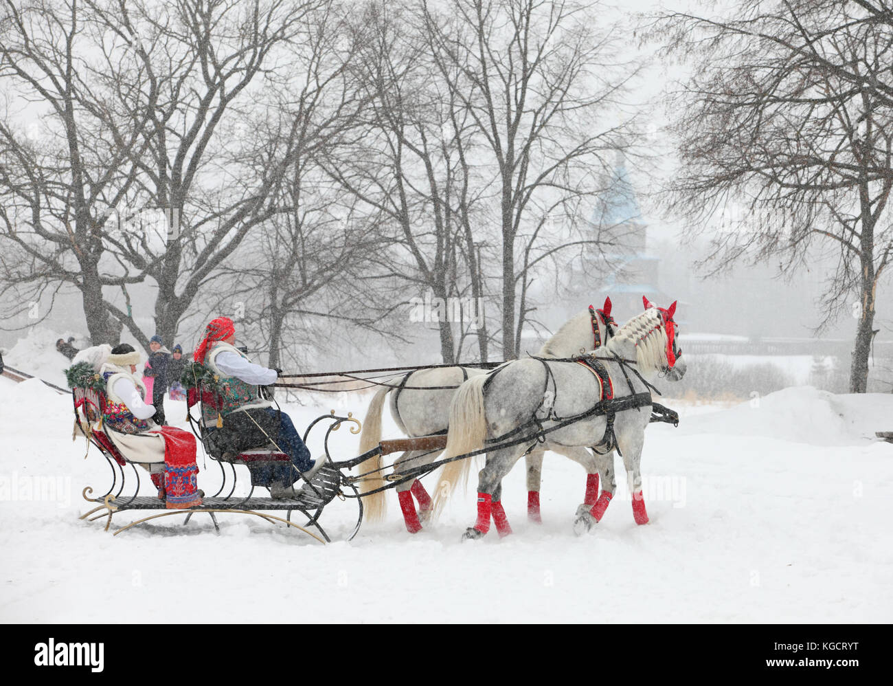 russian orlov trotter horse pulling sleigh in winter obstacle cone