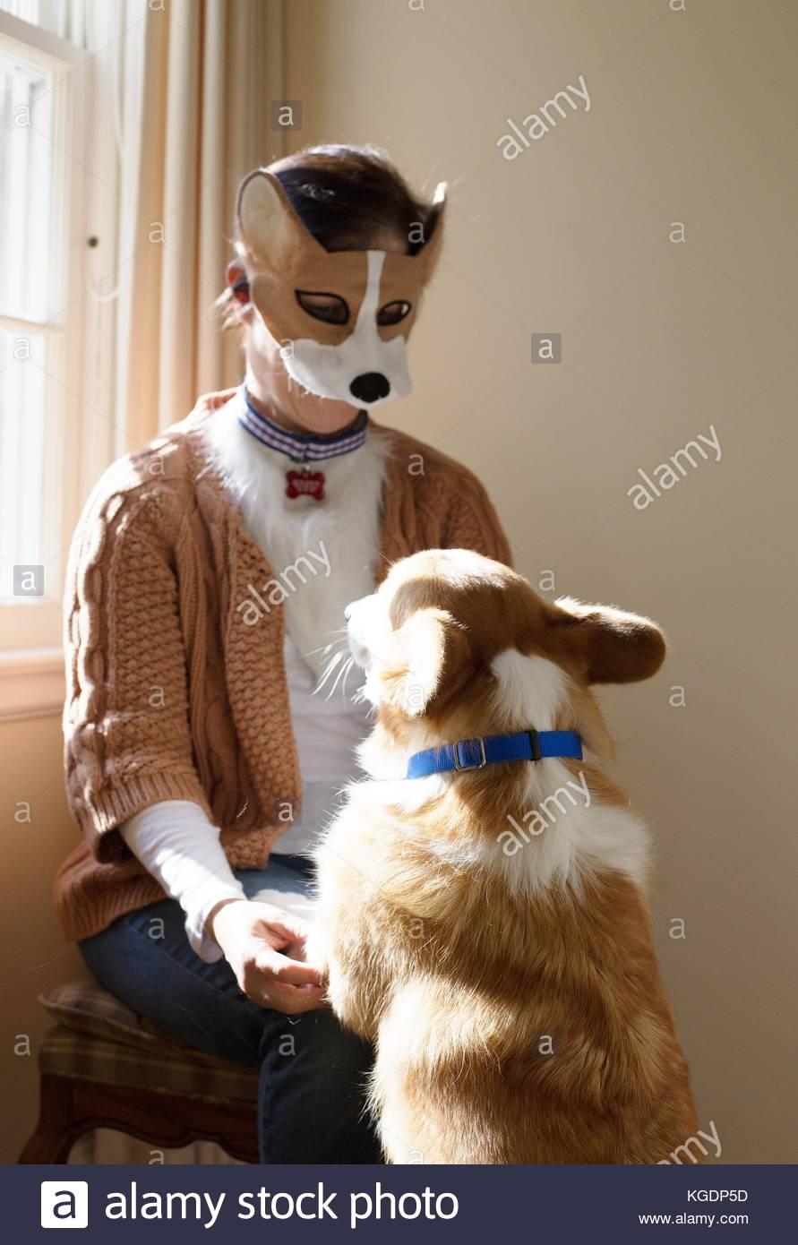 a woman in a corgi dog costume looking at her corgi dog stock photo