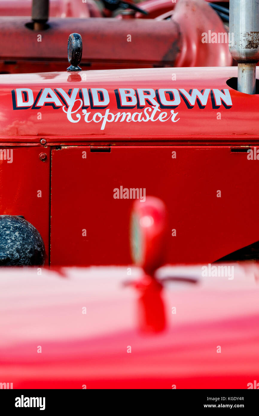 Close Up Detail Of A David Brown Cropmaster Tractor Bonnet On Display At  The 2017