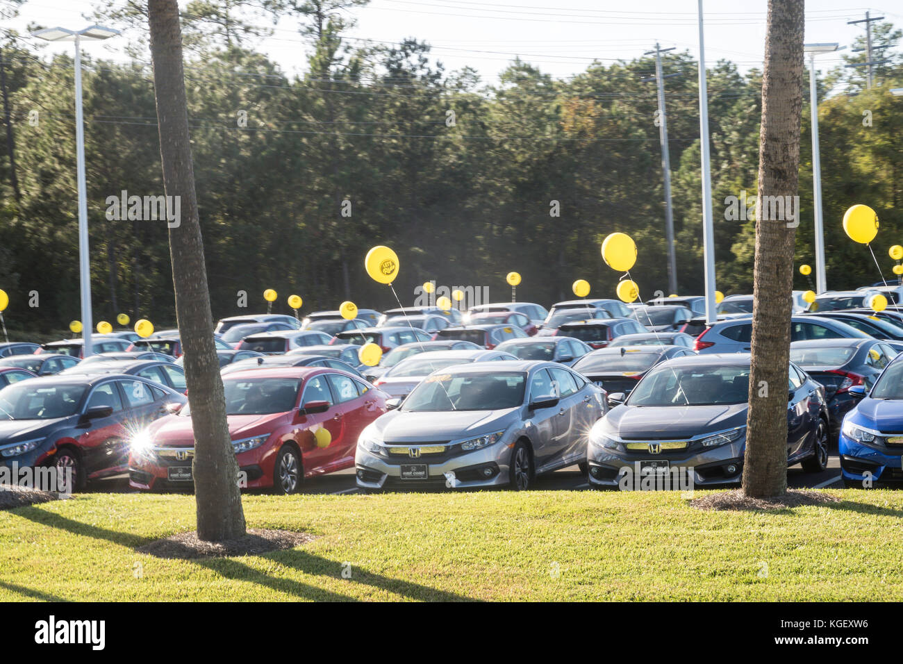 Used cars for sale usa stock photos used cars for sale for Honda northern blvd
