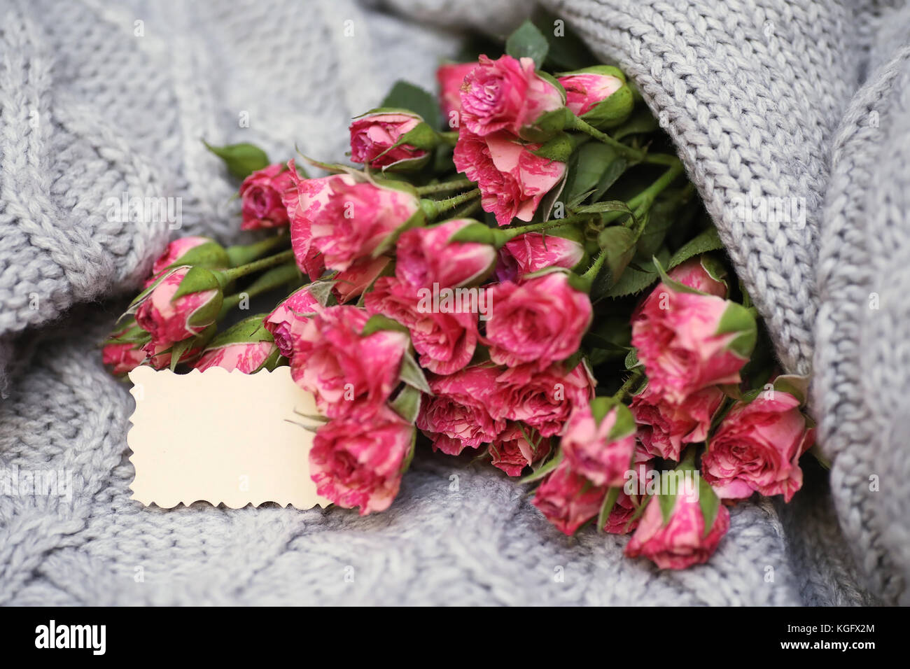Bouquet Of Red Roses On Textile Sweater Stock Photo 165077548 Alamy