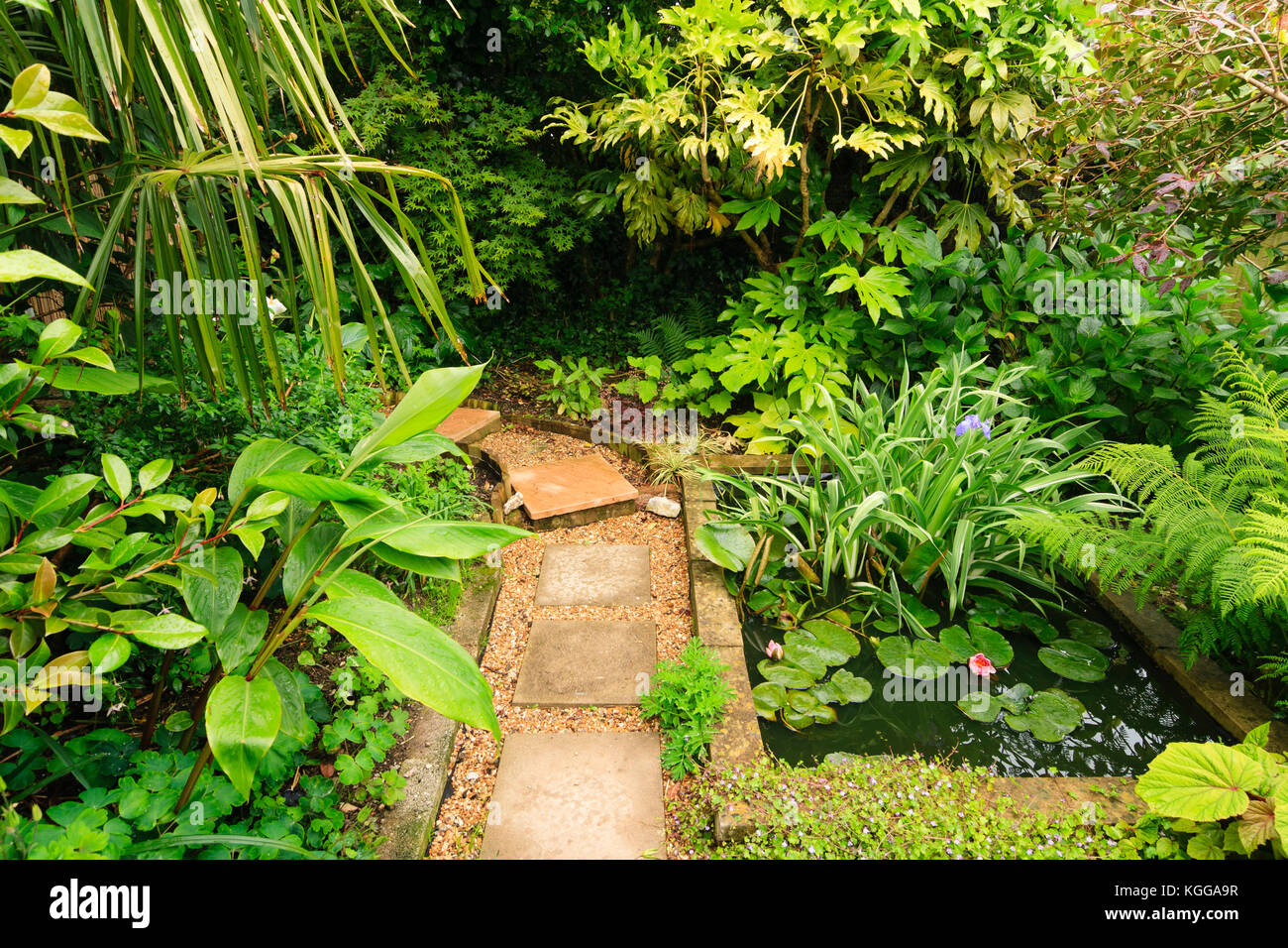 Ornamental garden pond uk stock photos ornamental garden for Ornamental garden ponds