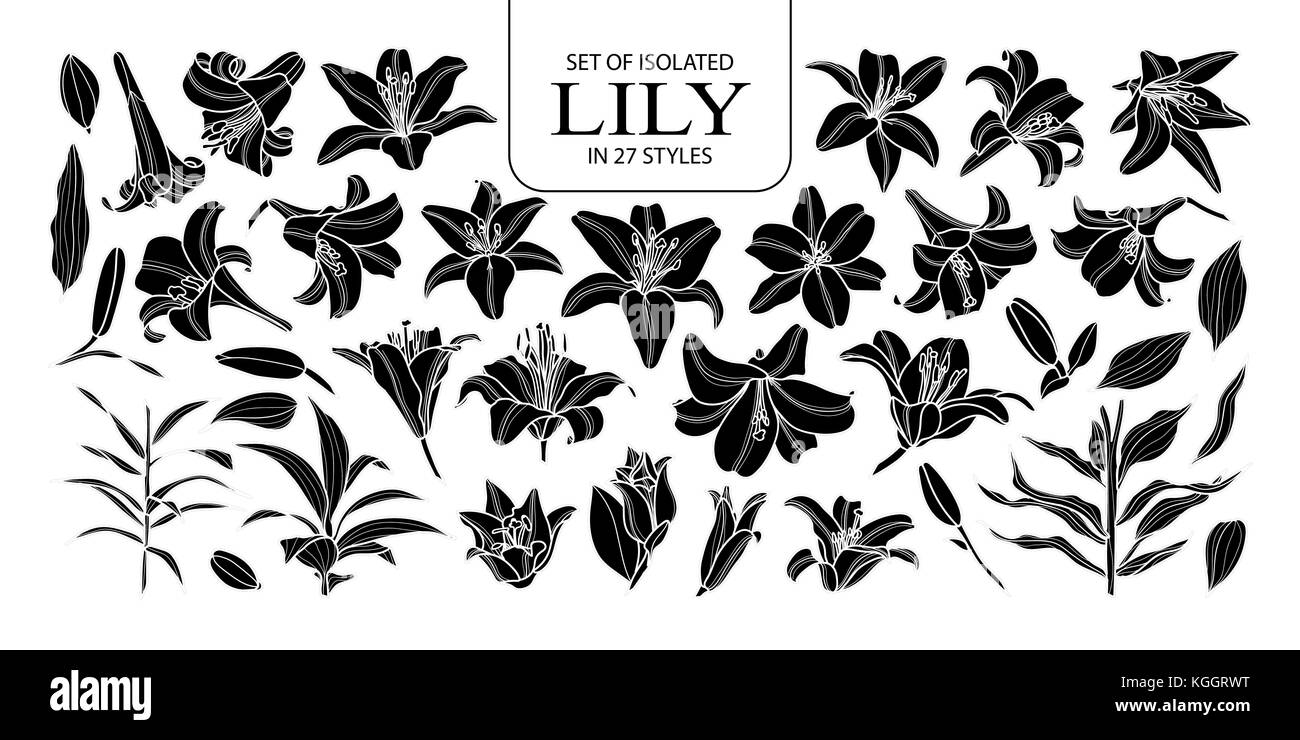 Set Of Isolated Silhouette Lily In 27 Styles Cute Hand Drawn Flower