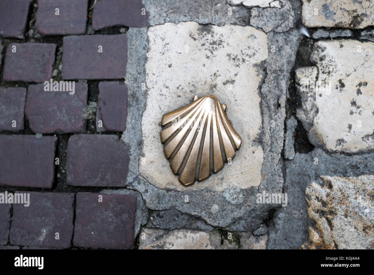 Street indicating that is the jacob way camino de santiago with a street indicating that is the jacob way camino de santiago with a scallop shell one of the most iconic symbols prigueux dordogne biocorpaavc Image collections