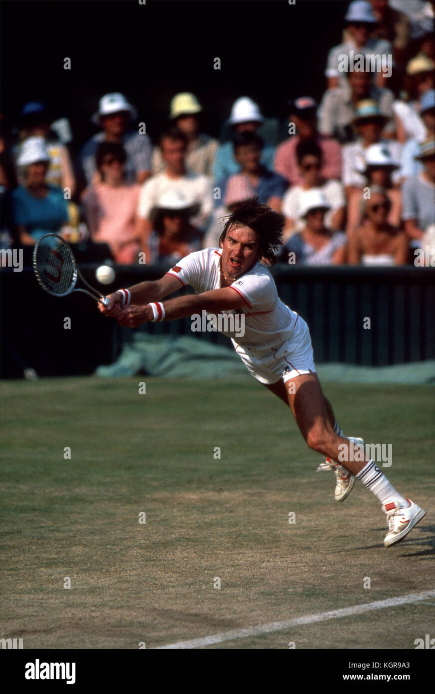 Jimmy Connors Stock s & Jimmy Connors Stock Alamy