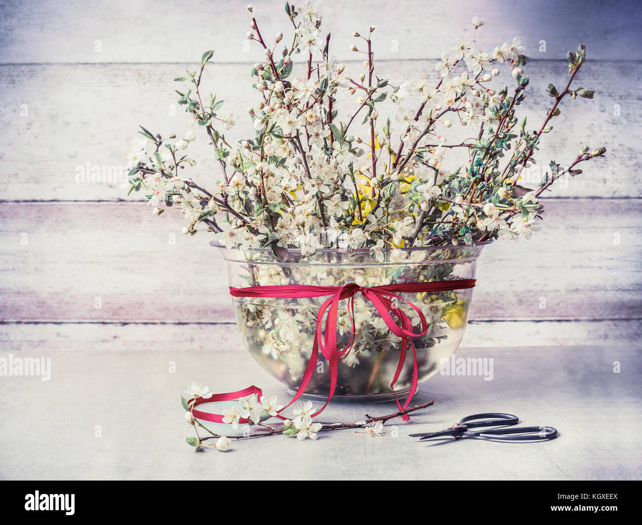 Twigs vase stock photos twigs vase stock images alamy springtime cherry blossom twigs bunch in vase with ribbon and shear on rustic table at wooden reviewsmspy