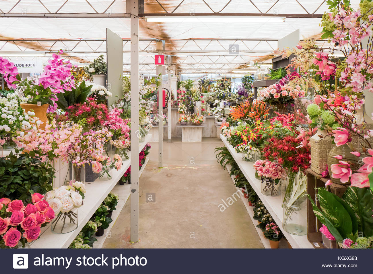 Artificial floral display stock photos artificial floral for Driesprong zoetermeer