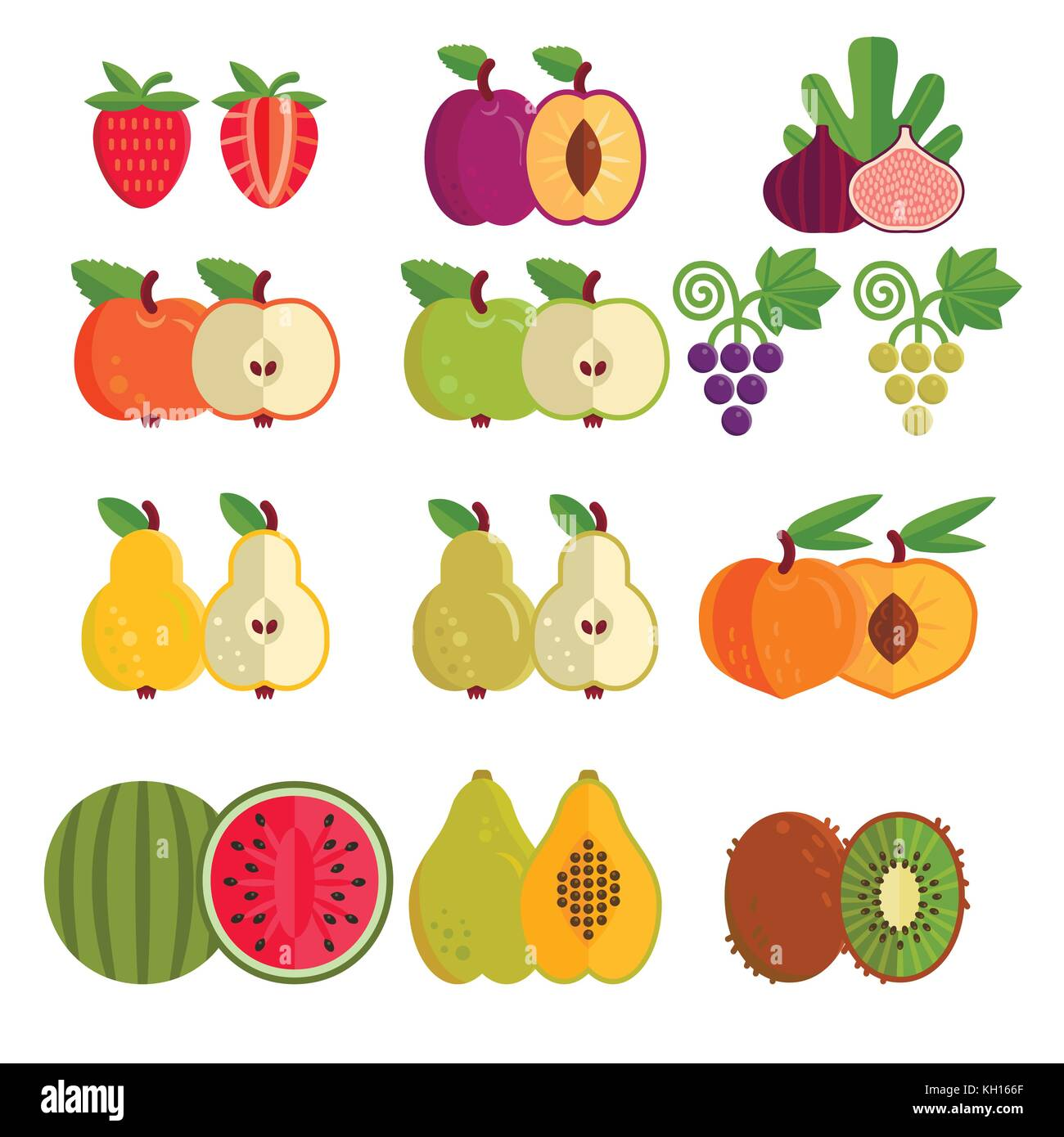 vector collection of fruits all objects are conveniently grouped