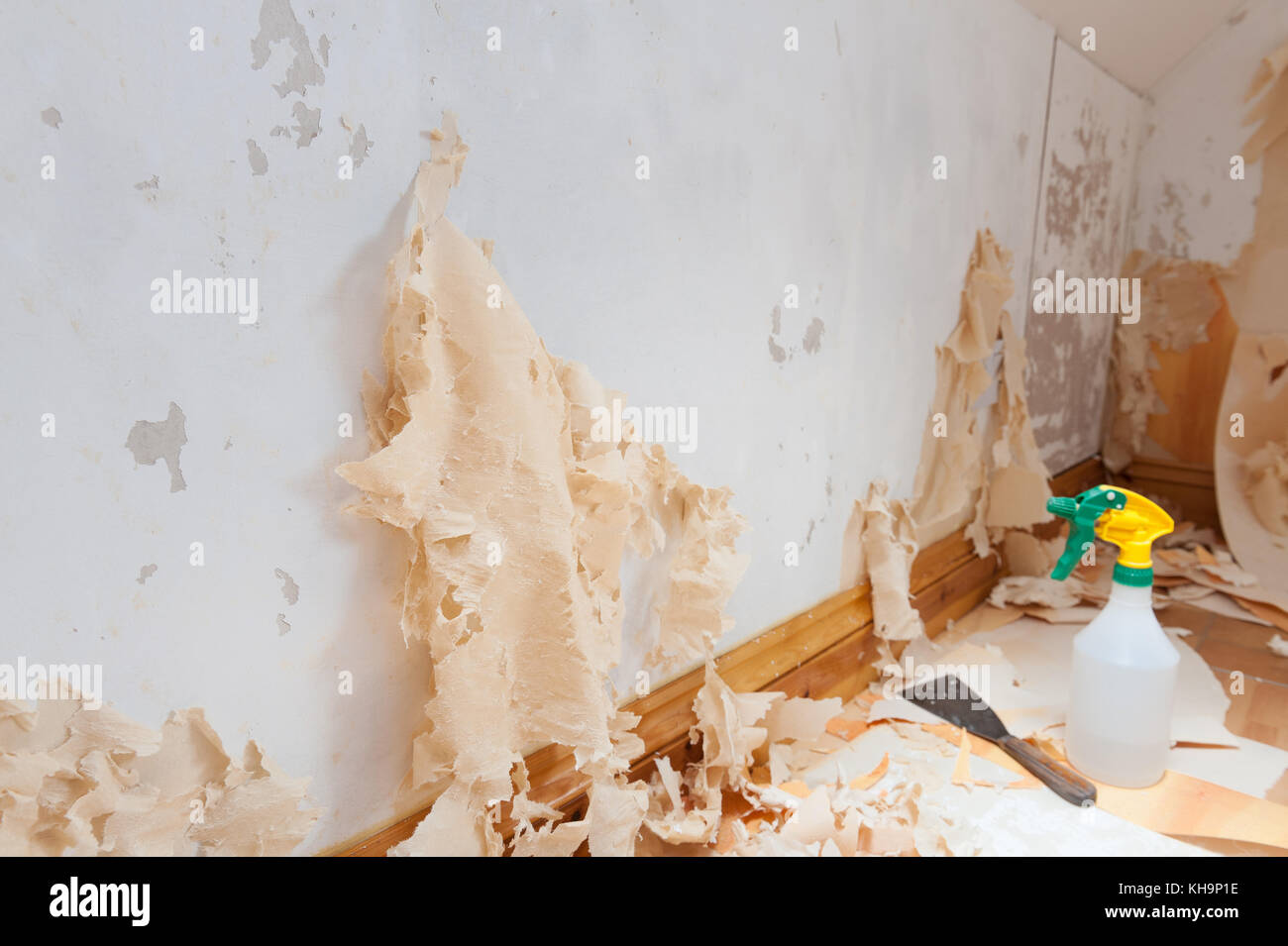 Stripping wallpaper stock photos stripping wallpaper for How hard is it to remove wallpaper