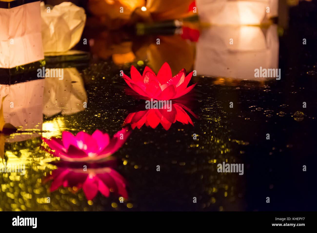 Floating Lotus Flower Paper Lanterns On Water Stock Photo 165667803