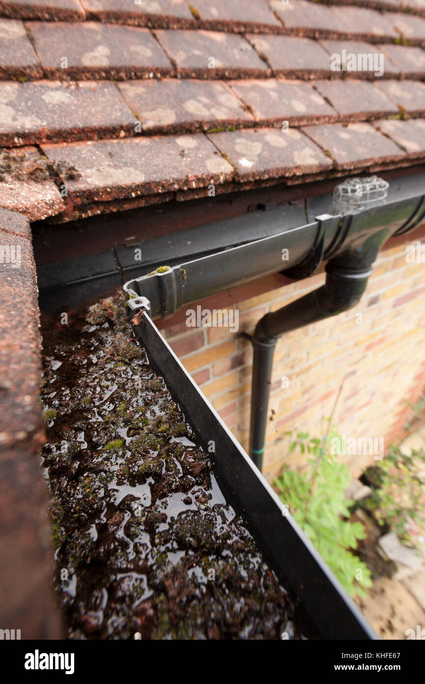 Rainwater Gulley Stock Photos Amp Rainwater Gulley Stock
