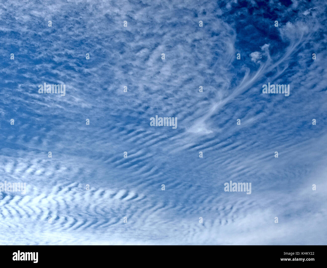 dark blue sky with white feather clouds for background or wallpaper