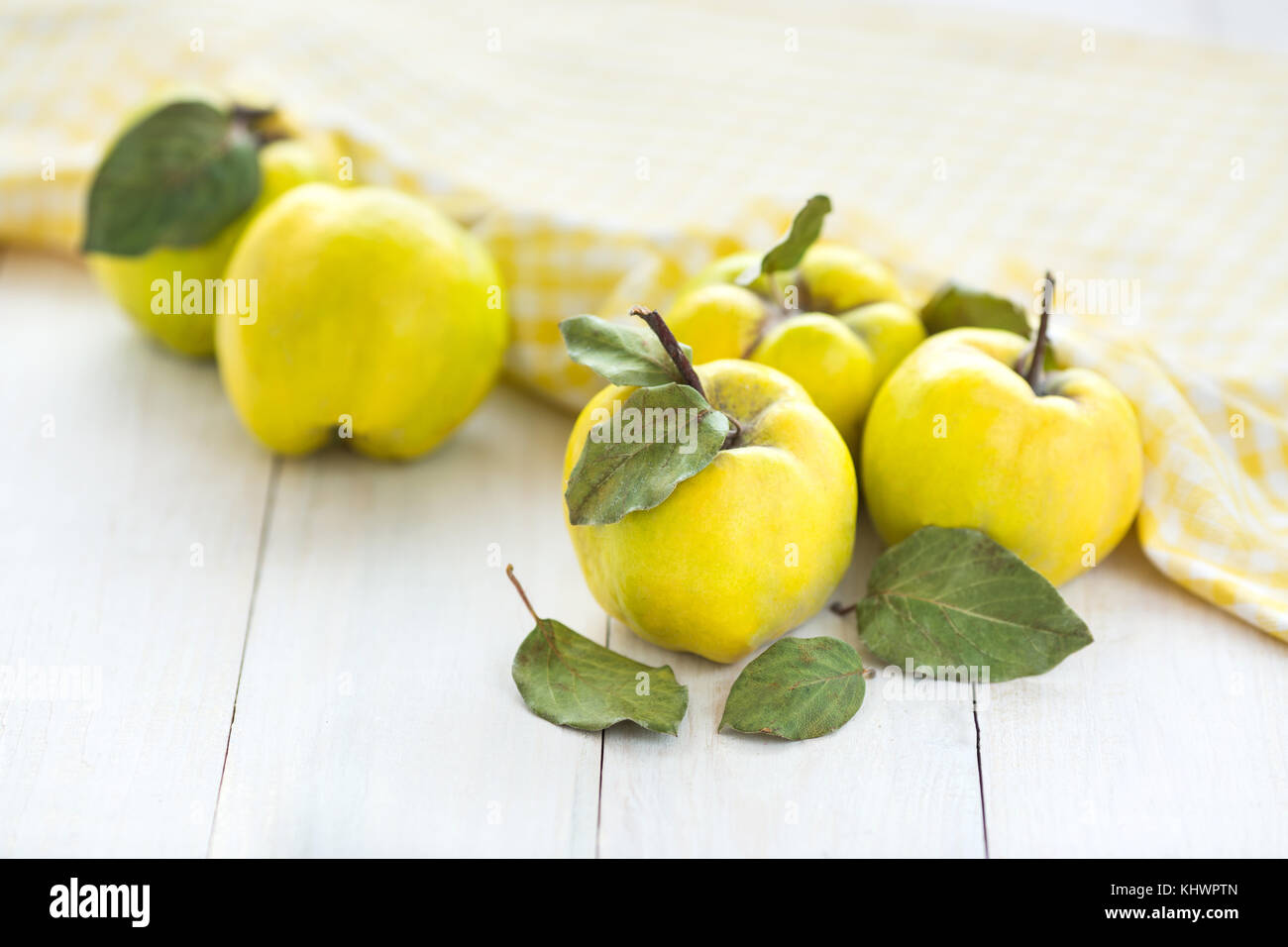 Quince stock photos quince stock images alamy spring refreshment harverting concept close up of beautiful fruits of yellow color with biocorpaavc Image collections