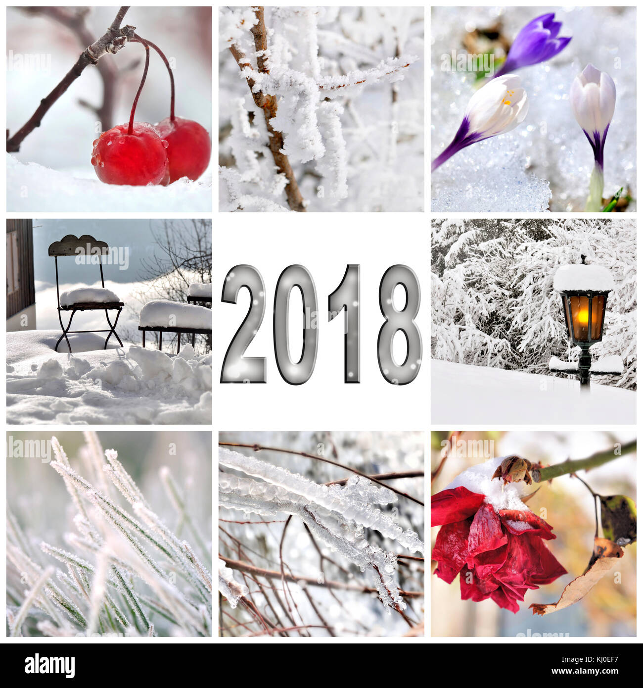 2018 greeting card with collage of the garden in winter stock photo 2018 greeting card with collage of the garden in winter kristyandbryce Image collections
