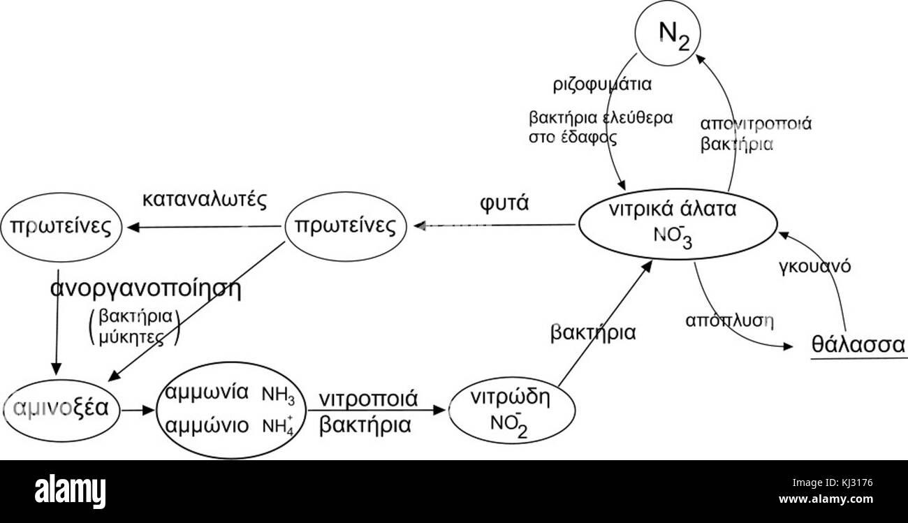 Vector illustration nitrogen cycle stock photos vector nitrogen cycle el stock image pooptronica Choice Image