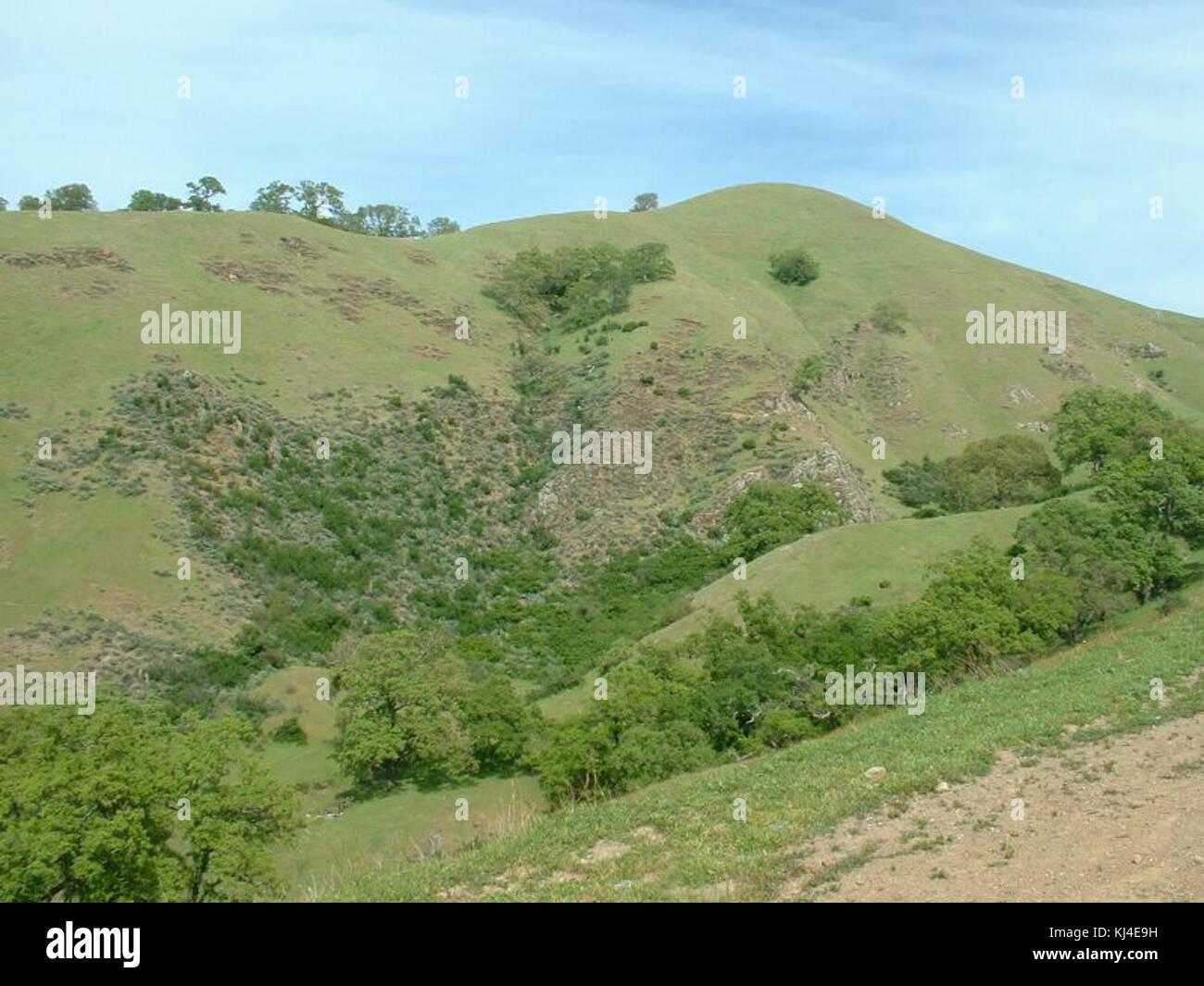 Sunol Regional Wilderness Stock Photos & Sunol Regional Wilderness Stock Images - Alamy