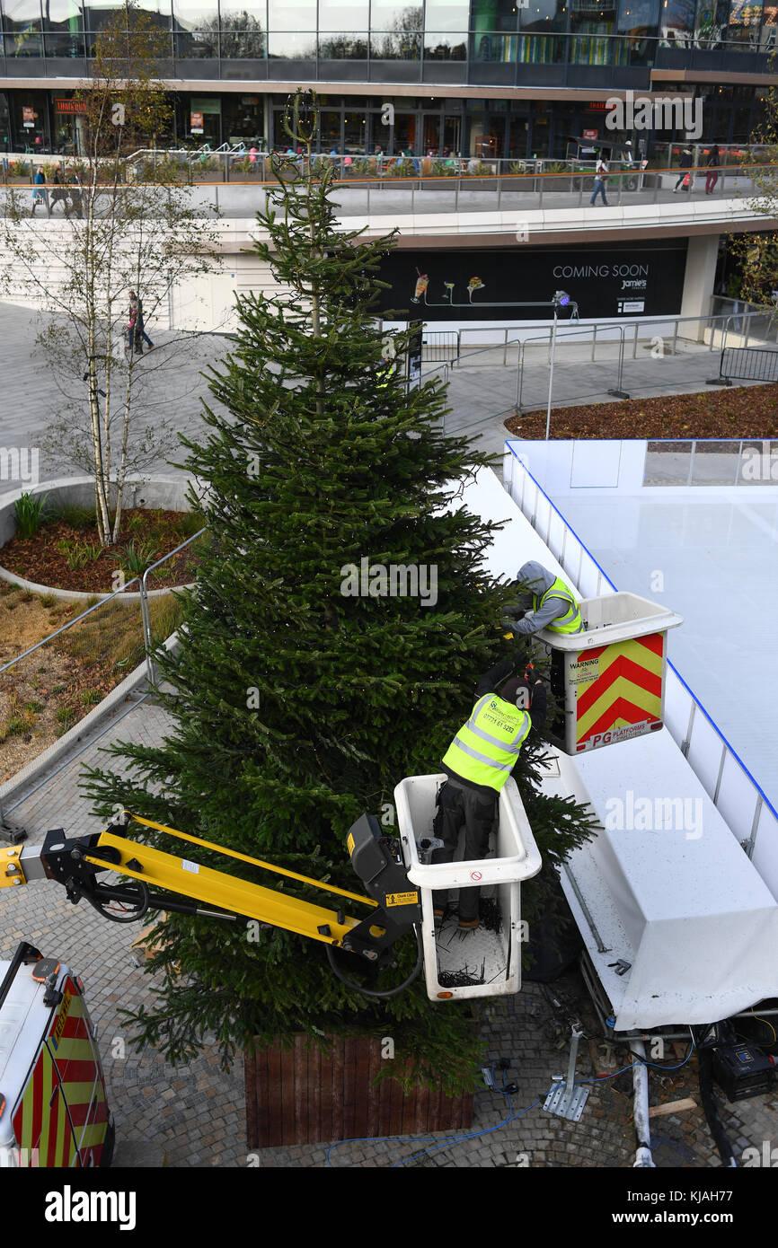 Dressing of Christmas tree at Southampton West Quay England Stock ...