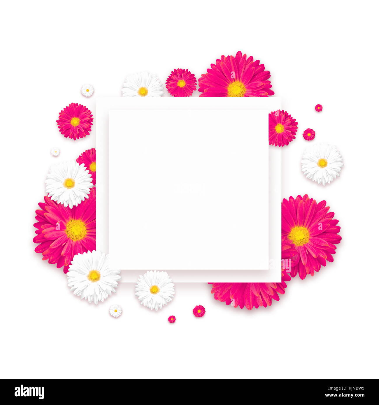 White Background With Beautiful Colorful Flower Wallpaper Flyers Invitation Posters Brochure Voucher Discount