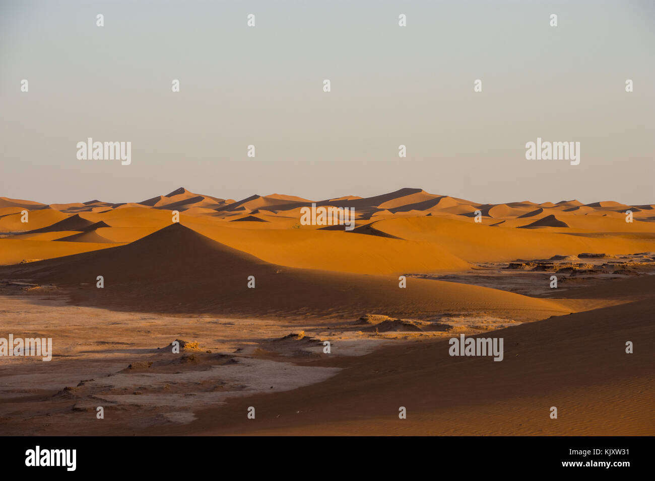 The largest desert in the world 79